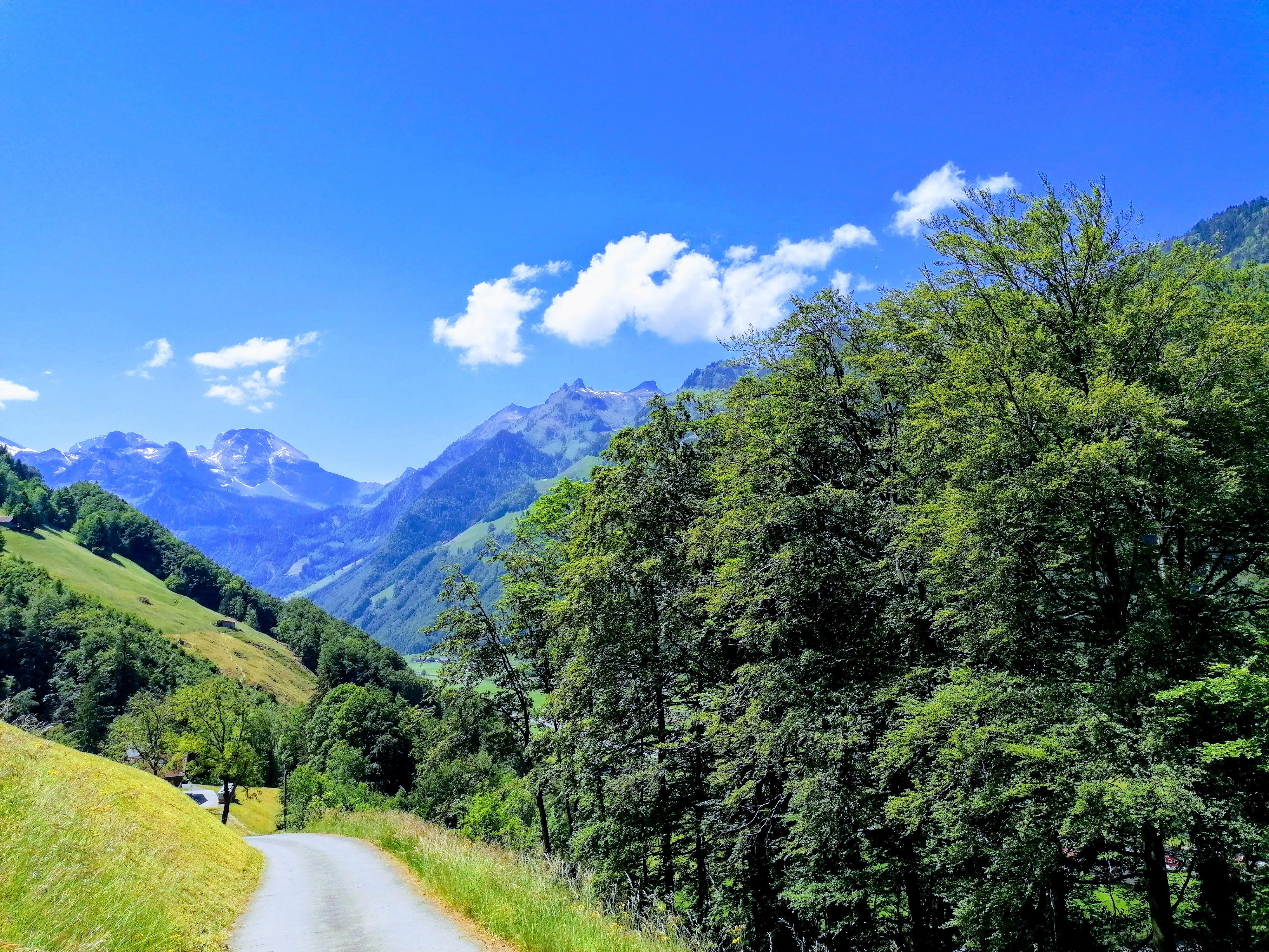 Blick auf das Engelbergertal auf dem Weg nach Oberrickenbach