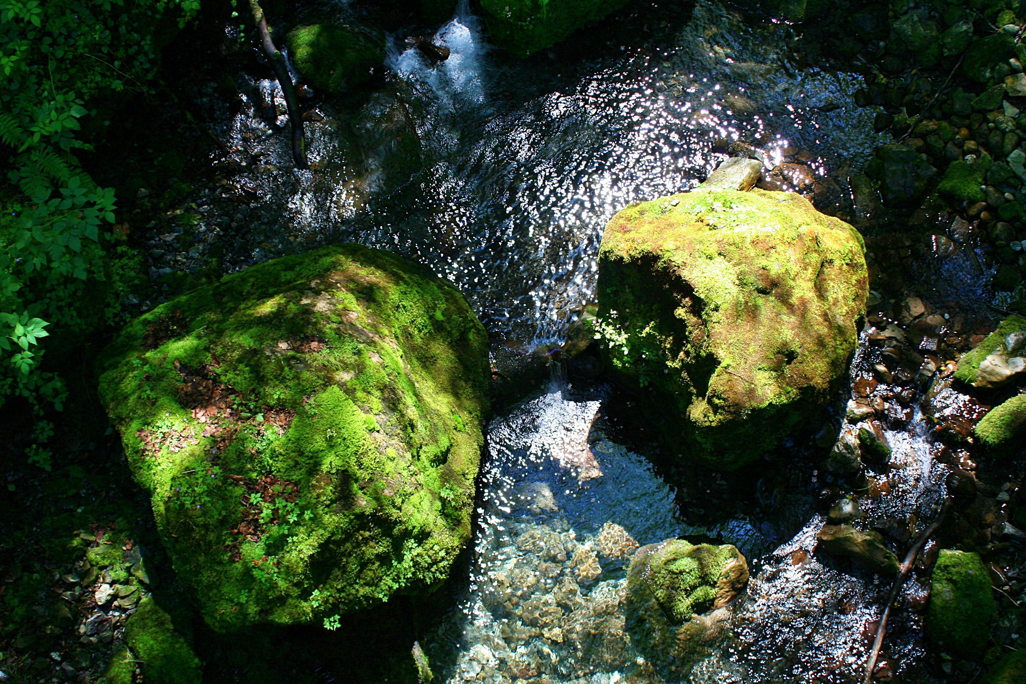 Der Aberenbach am Ende des Wägitalersees