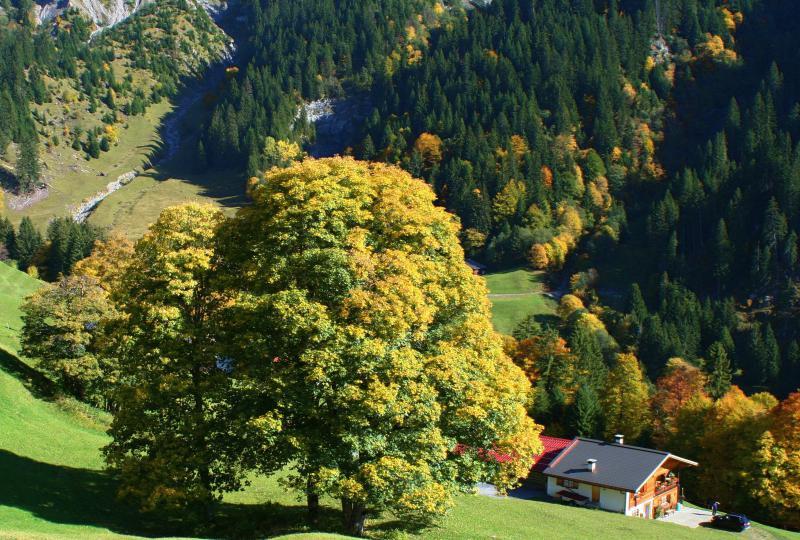 Steilhang am St. Antöniental mit Bauernhof