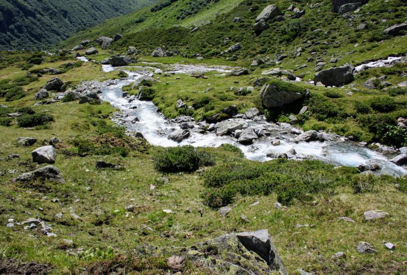 Der Fluss Meienreuss bahnt sich den Weg ins Meiental