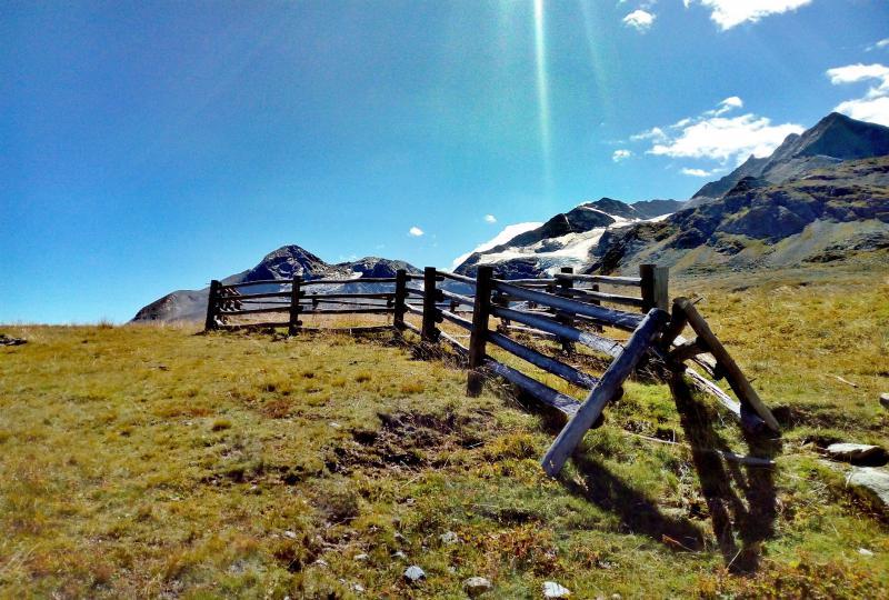 Schafgatter in der Nähe des Berninapass