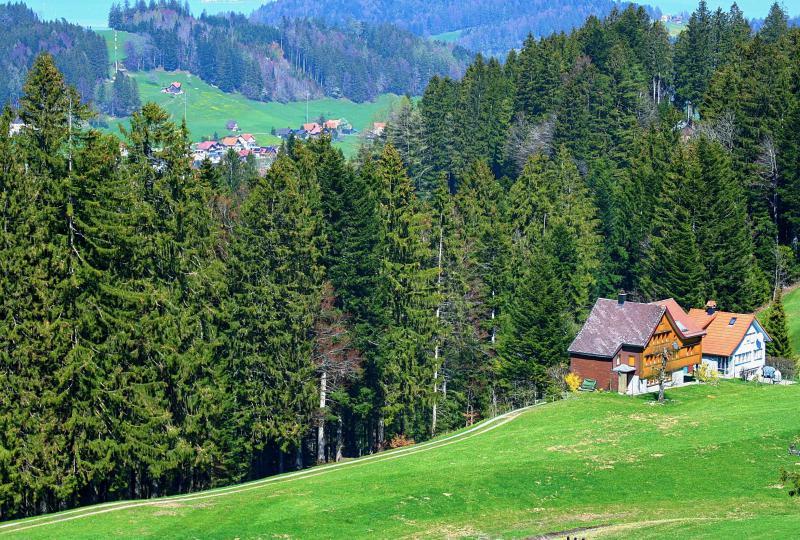 Small idyll near St. Anton (AI)