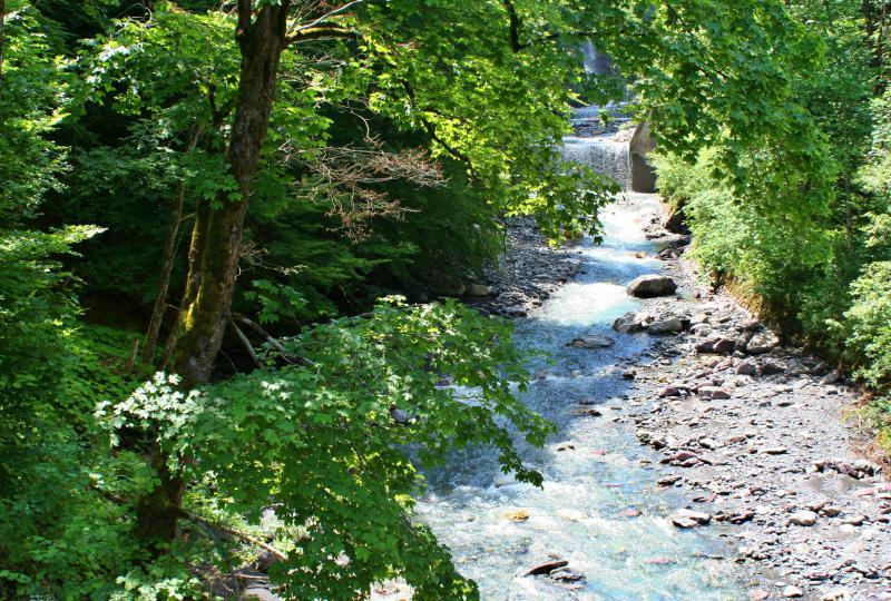 The river Seez flows through the Weisstannen Valley
