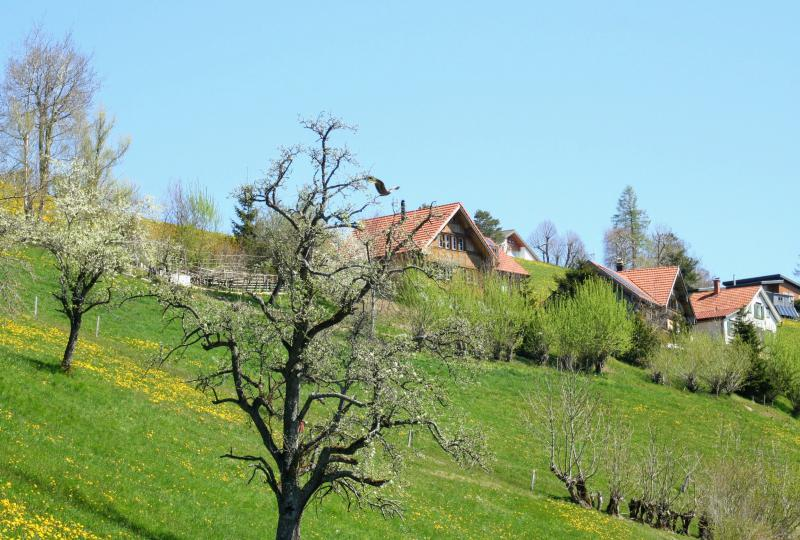 Rehetobel (Fahrt aus Richtung St. Gallen)
