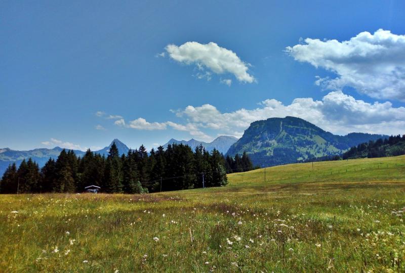 Sattelegg (Wilerzell)